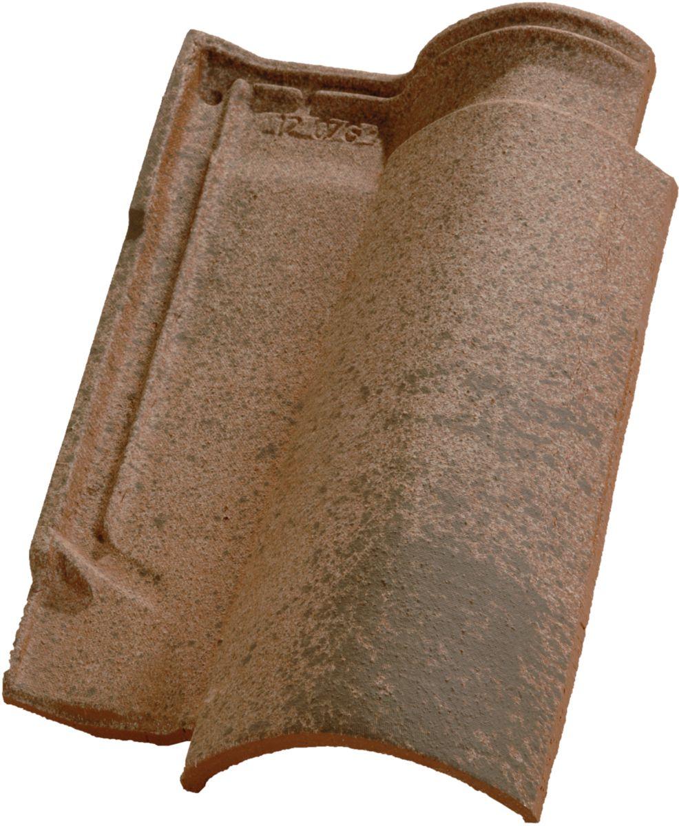 Tuile terre cuite Oméga 10 Ste Foy nuancé paille Edilians 495x305 mm